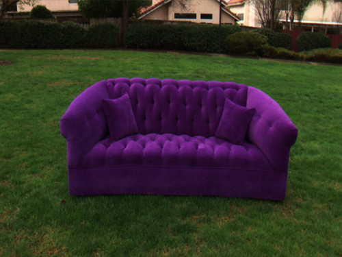 We found our purple couch the purple couch the purple